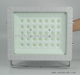 70WLED防爆投光灯 70WLED防爆灯 壁挂式LED防爆灯70W