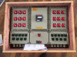 BM(D)X51-防爆动力配电箱 粉尘/隔爆型 IIBT6