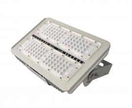 LED泛光��YB5540/AC220V正白光