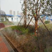 冷雾工程免费方案设计
