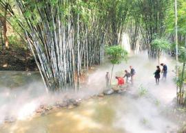 北仑林园喷雾喷泉