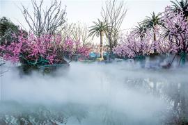 奉化林园冷雾喷泉