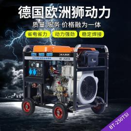 欧洲狮动力移动250A便携式柴油发电焊机油耗B-250TSI
