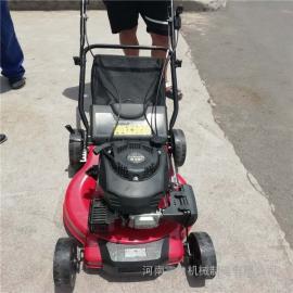 手推式小型草坪机全新升级