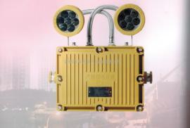 BAJ52停电应急防爆灯➕LED光源➕3种灯壳