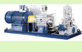 德国LEISTRITZ螺杆泵