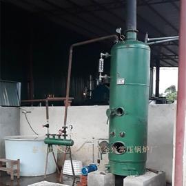 蒸菌锅炉 小型燃煤蒸汽锅炉