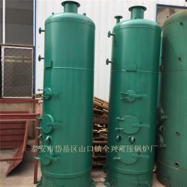 立式蒸汽锅炉 小型立式蒸汽锅炉