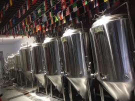餐饮店精酿啤酒北京赛车,,烧烤原浆啤酒北京赛车,小型不锈钢精酿啤酒北京赛车