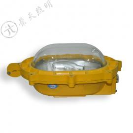 TGF753A应急防爆泛光灯,TGF752高压钠灯