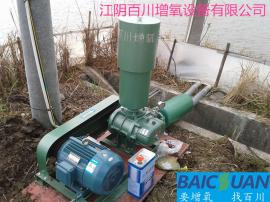 7.5KW80WA二叶罗茨风机污水处理曝气机