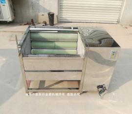 多功能洗菜机自动果蔬清洗多少钱 技术培训