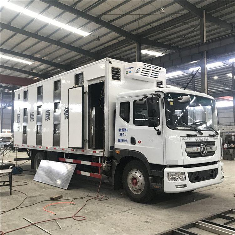 7米9.6米大猪运输车 7米6猪苗运输车图片