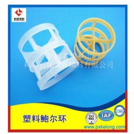 100%全新PP料塑料鲍尔环填料增强聚丙烯鲍尔环耐压耐高温