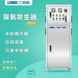 饮用水处理臭氧发生器 纯净水矿泉水杀菌臭氧机