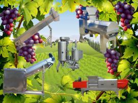 高品质葡萄酒机械生产线 果酒生产线效率高