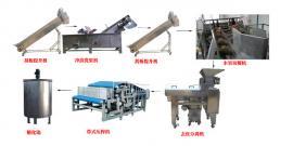 火龙果饮料加工生产线 耐腐蚀304不锈钢材质可连续工作