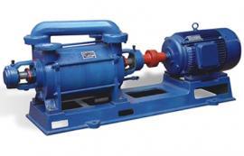 2SK双极水环式真空泵