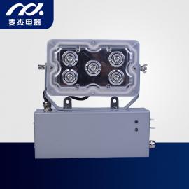 麦杰电器 固态免维护应急灯 WF292J