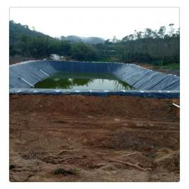 1.5mm�B�r液池防�B膜|�B�r液池土工膜|HDPE土工膜*