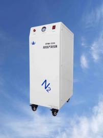 色谱法氮气发生器DFNW-500系列