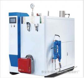 全自动蒸汽发生器 燃气蒸汽发生器 环保锅炉