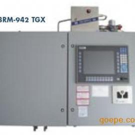 硫化氢/总硫在线分析仪942-TGX