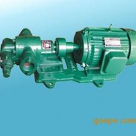 2CY系列齿轮油泵,不锈钢齿轮泵,润滑油齿轮泵