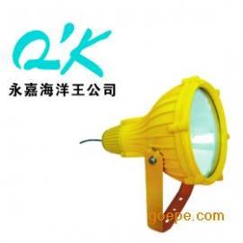 海洋王BTC8210防爆投光灯 防爆灯具价格 BTC8210-400