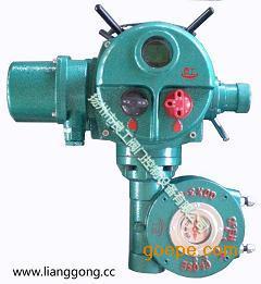 DQ/DQW系列叠加式阀门电动头 DQ800