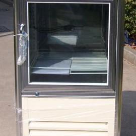 DYCD-250恒温恒湿老化箱