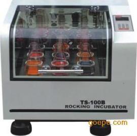 台式恒温振荡器 振荡培养箱TS-100C 小型振荡培养箱 恒温振荡箱