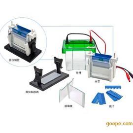 JY-SCZ2+双垂直电泳槽