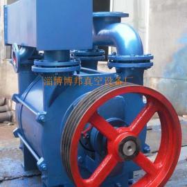 2BE252/253水环式真空泵