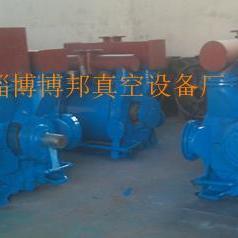 2BEC420水环真空泵