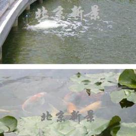 人工湖景观水处理beplay手机官方