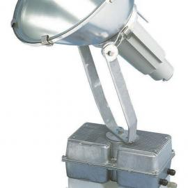 飞利浦HNF207/SON-T1000W泛光灯