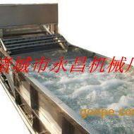 永昌鼓泡式蔬菜清洗机,苹果清洗机,大枣清洗机