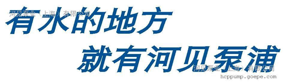 河见泵业(上海)有限公司