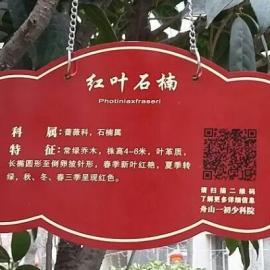 街道物业植物标识牌 挂牌品牌-汇宏源翔厂家