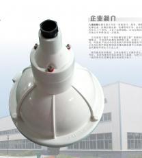 BAD52-200W防爆防腐照明灯
