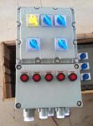 铸铝壁挂式防爆照明配电箱10A25A32A50A