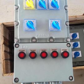 zhu铝壁挂shi防爆zhaoming配电箱10A25A32A50A