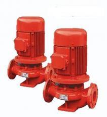 威王:XBD-L型立式单级单吸消防泵