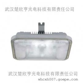 40W海洋王长寿顶灯 NFC9175-JW40长寿顶灯
