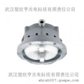 40W长寿无极灯 NFC9176-WJ40海洋王长寿顶灯