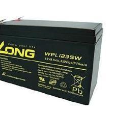 LONG蓄电池WP24-12/12V24AH参数/价格