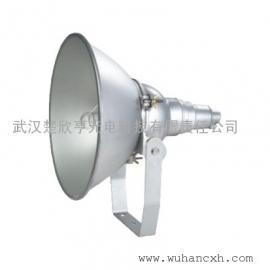 NTC9210-N250防震型投光灯