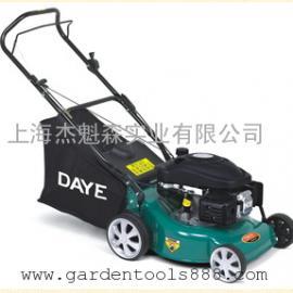 大叶汽油割草机DYM1663E、 园林汽油打草机 园林机械