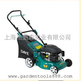 大叶汽油割草机DYM1663EQ、园林割灌机除草机 园林汽油打草机